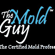 Mold Guy